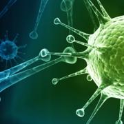 Sciences biologiques en ergothérapie