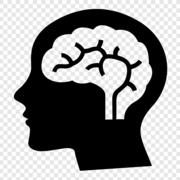 Introducción a la Salud Mental