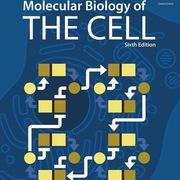 BIM 202 Biology for Engineers