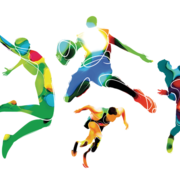 3/4 VCE Physical Education