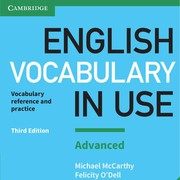 Vocabulary in use