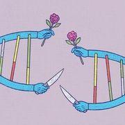 Understanding Genetic Variation