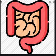 C+P: Gastrointestinal