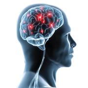 3MB Neurology (My version)