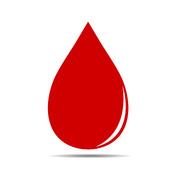 Système du sang II