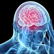 NeuroEndo Exam 3