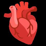 MI: Cardiología
