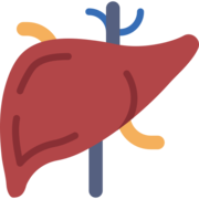Hipertensão Portal