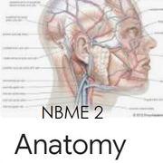 1.3 2021 U World NBME2 Tuesday Anatomy