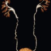KB-GU radiology
