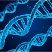 GCSE AQA Combined Science Biology 9-1