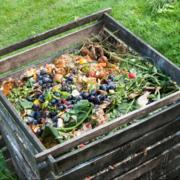 Organic Gardening Pt. 2