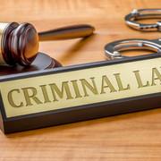 Criminal Justice Exam 2