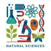 Grade 8 natural science