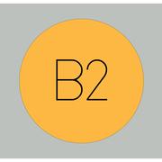 B2 . 1