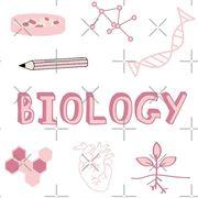 Grade 10 Biology