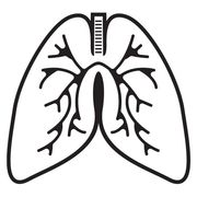 Respiratory Therapy Review