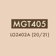 MGT405 IT in Business
