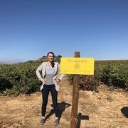 Spanish Wine Scholar by BB