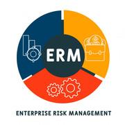 Enterprise Risk Management (RSK2601)