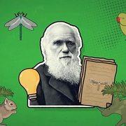 Life Sciences-Formation of new species (speciation)