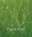 P Kerr