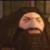 PS1 Hagrid