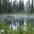 meagan gibbs