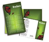 Brochure_flyer