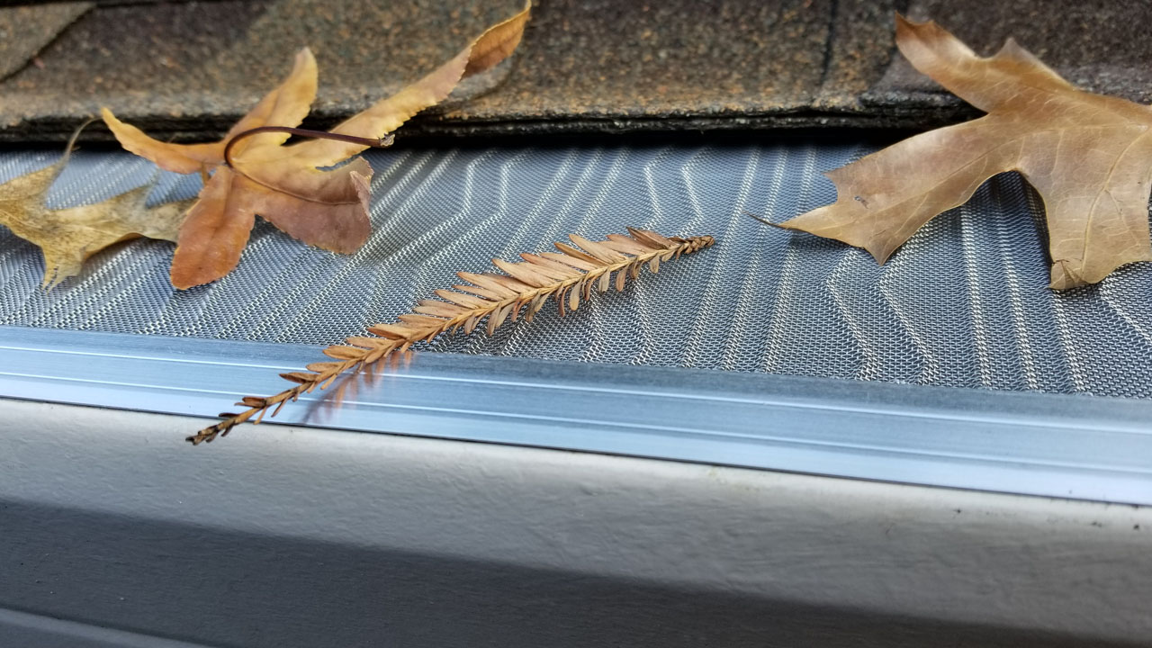 Leaf screens