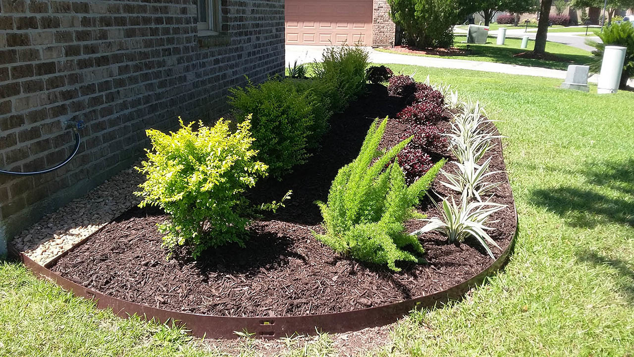 Landscaping new