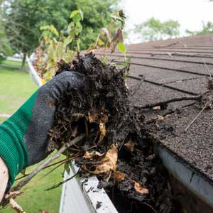 Gutter cleaning (1)