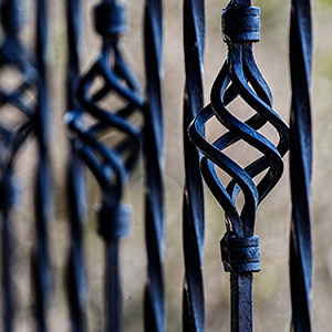 Fence   ornamental