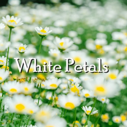 Cover of White Petals by Keys Of Moon