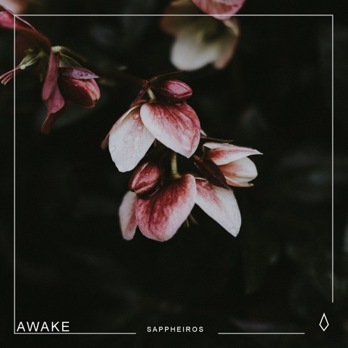 Cover of Awake by Sappheiros