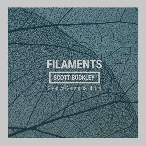 Cover of Filaments by Scott Buckley