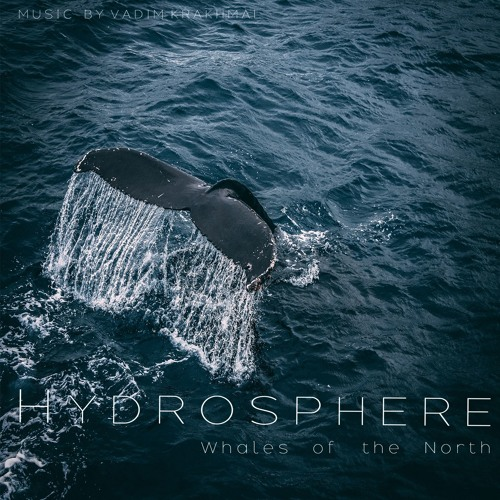 Cover of Whales Of The North by Vadim Krakhmal
