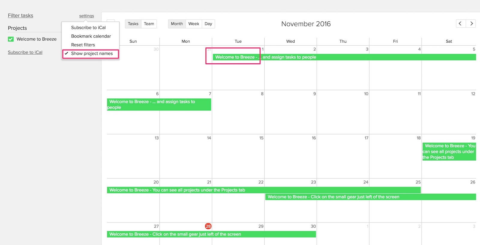 Show project name in calendar