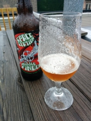 Is it too rainy outside to drink this Space Station Middle Finger? Help! #brewvu http://t.co/SqijtQUa2u