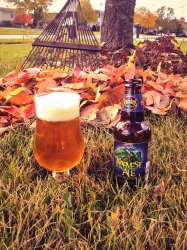 Harvesting leaves and Founders Ale. #brewvu http://t.co/o48KJ6GnL5