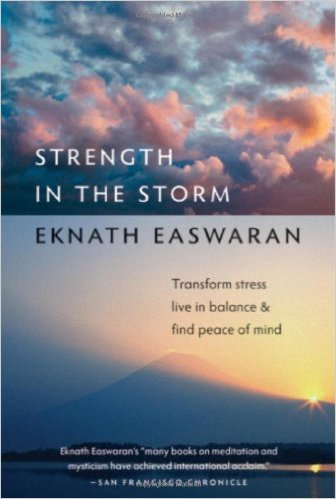 Strength in the Storm Book Cover
