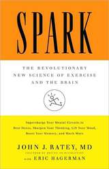 Spark Book Cover