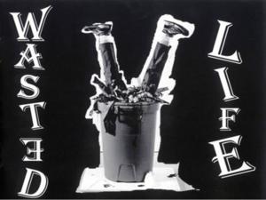 Wasted_life-medium