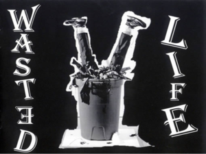 Wasted_life-medium-medium