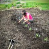 Communitygarden2-thumb