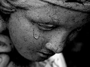 Weeping-angel-medium