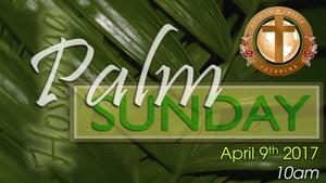 Palm%20sunday-medium