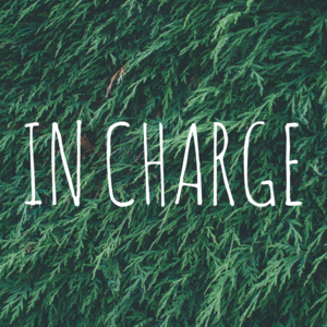 In-charge-medium
