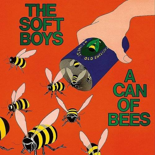 The Soft Boys - Can Of Bees