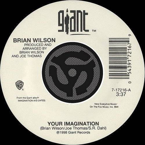 Brian Wilson - Your Imagination/Your Imagination (A Cappella)